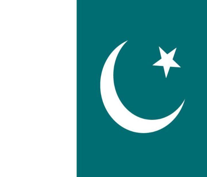 Pakistan Flag - My Evil Twin
