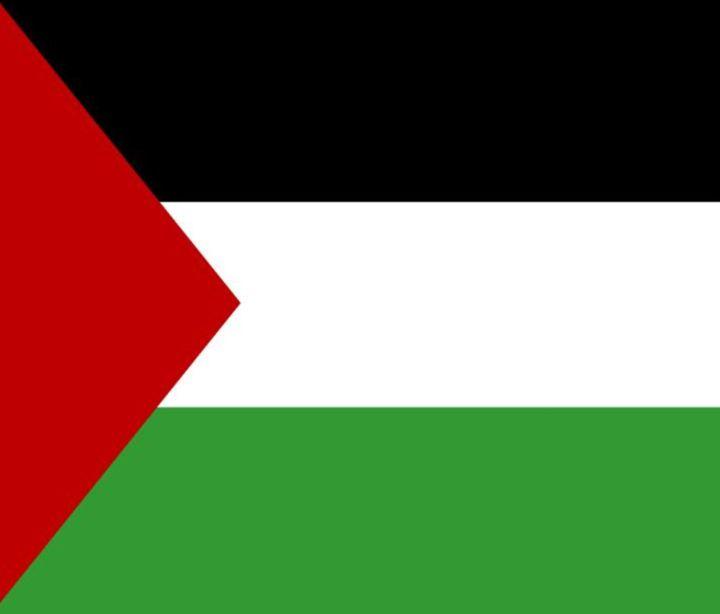 Palestine Flag - My Evil Twin