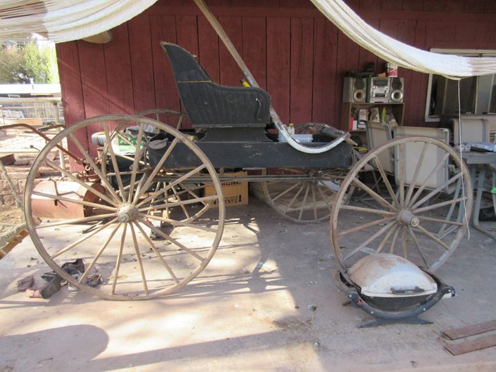 A Horse Drawn Carriage - My Evil Twin
