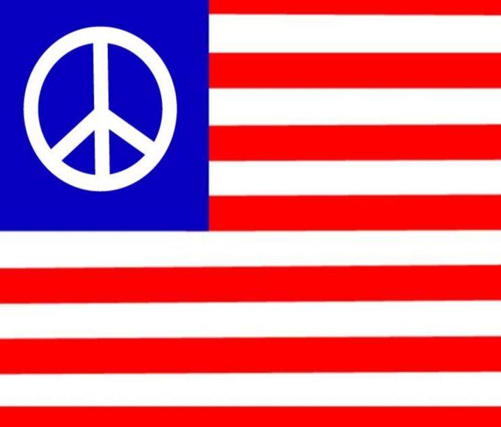 Peace USA Flag - My Evil Twin