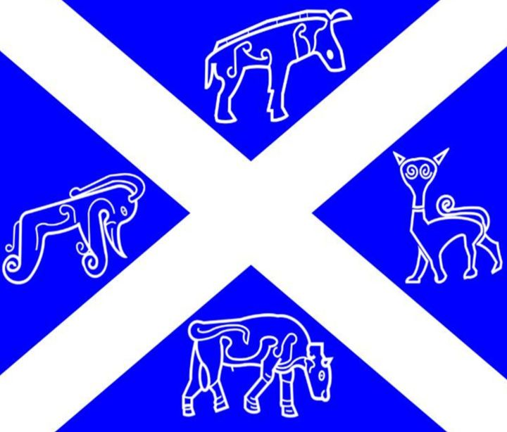 Pictish Scotland Flag #2 - My Evil Twin