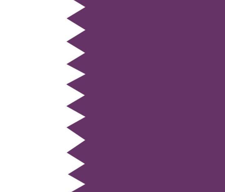 Qatar Flag - My Evil Twin