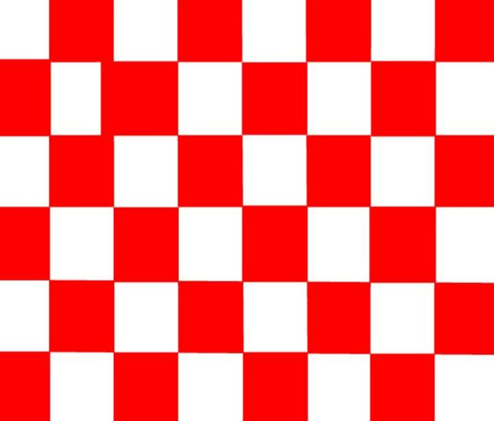Red & White Checkered Flag - My Evil Twin