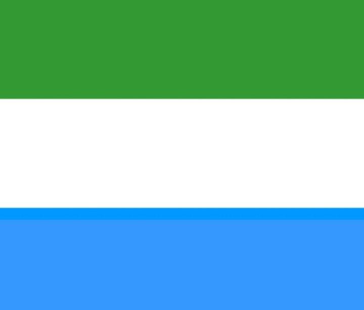 Sierra Leone Flag - My Evil Twin