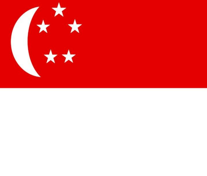 Singapore Flag - My Evil Twin