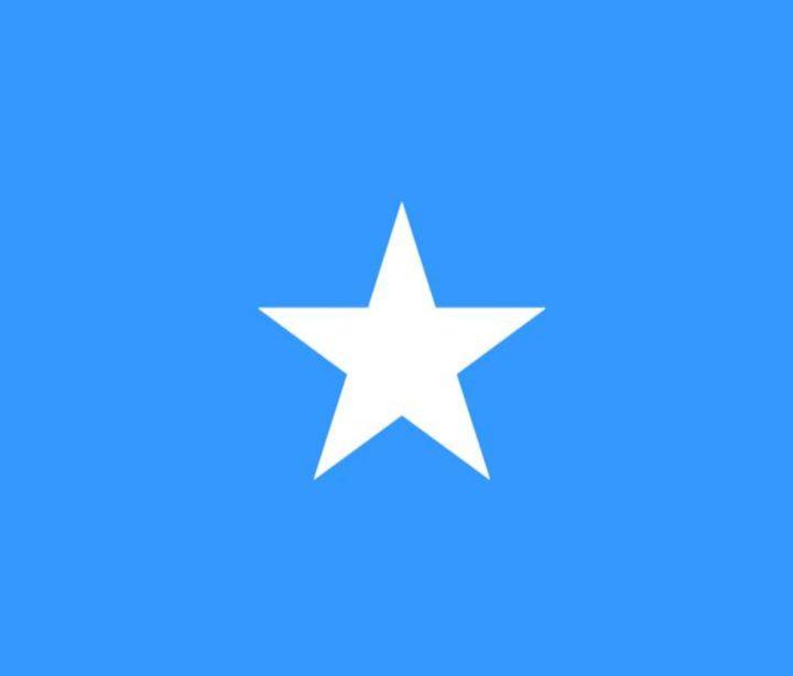 Somalia Flag - My Evil Twin