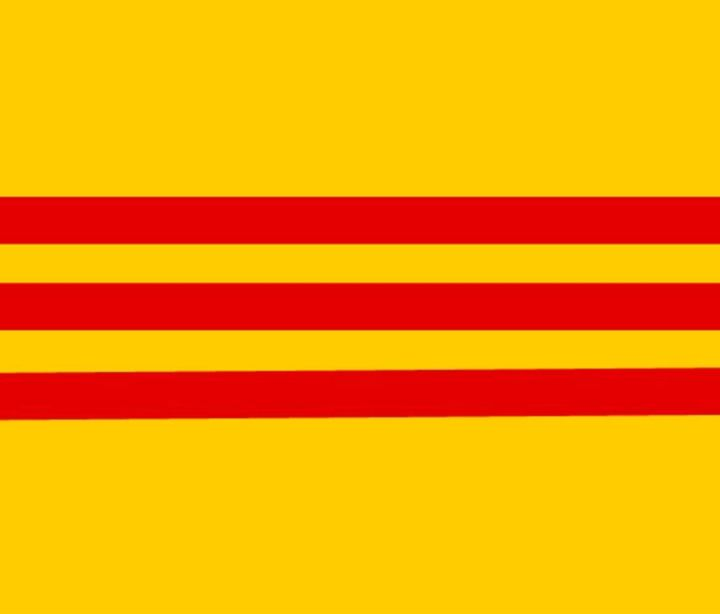 South Vietnam Flag - My Evil Twin
