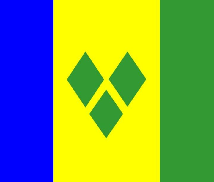 St. Vincent Flag - My Evil Twin
