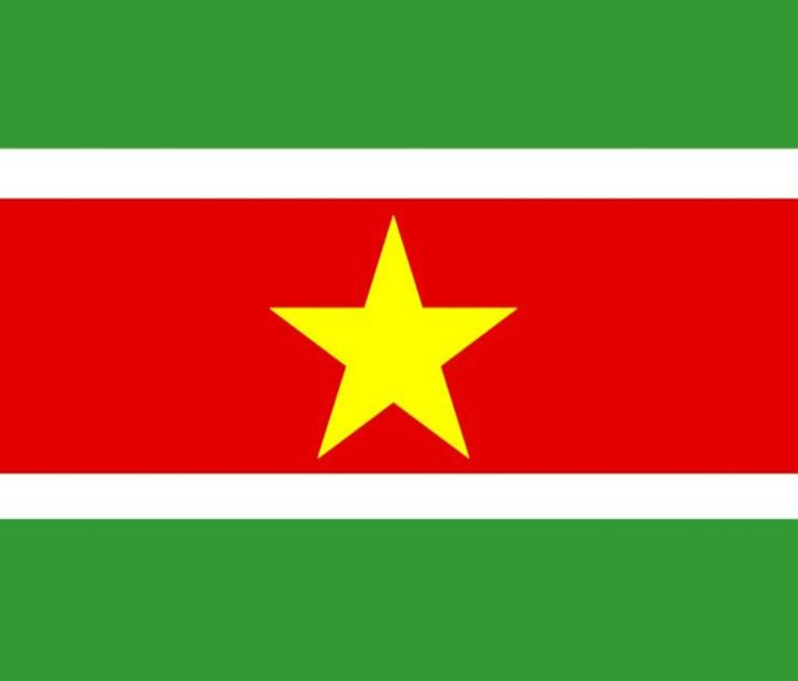 Suriname Flag - My Evil Twin
