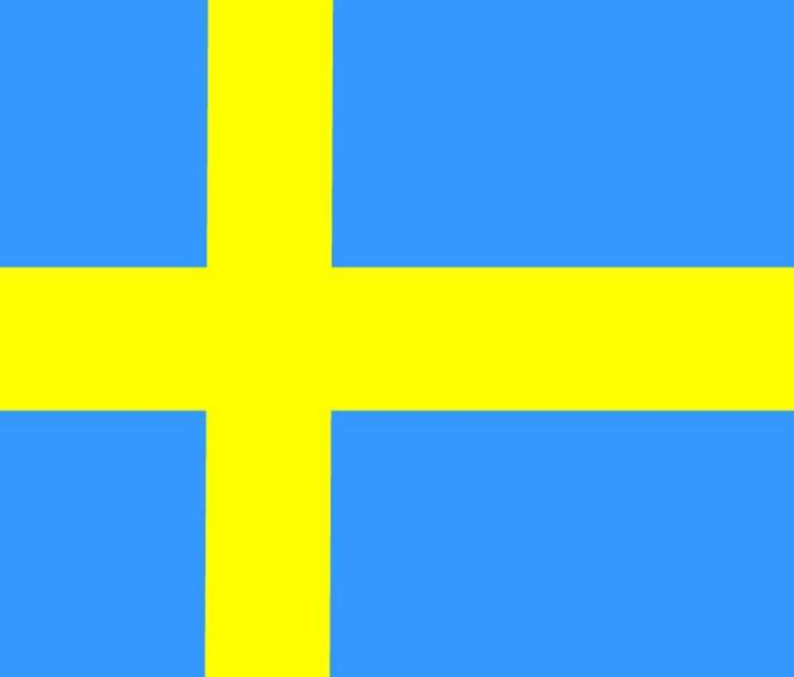 Sweden Flag - My Evil Twin