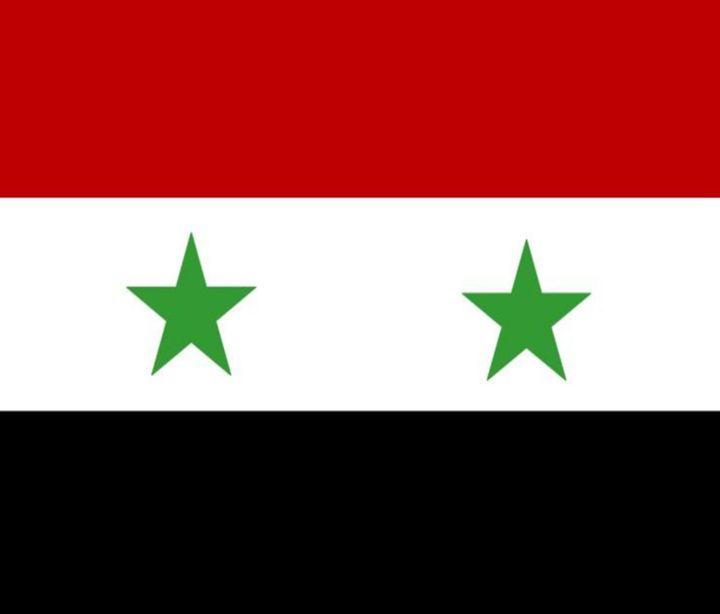 Syria Flag - My Evil Twin