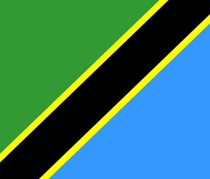 Tanzania Flag - My Evil Twin