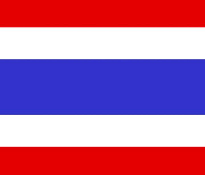 Thailand Flag - My Evil Twin