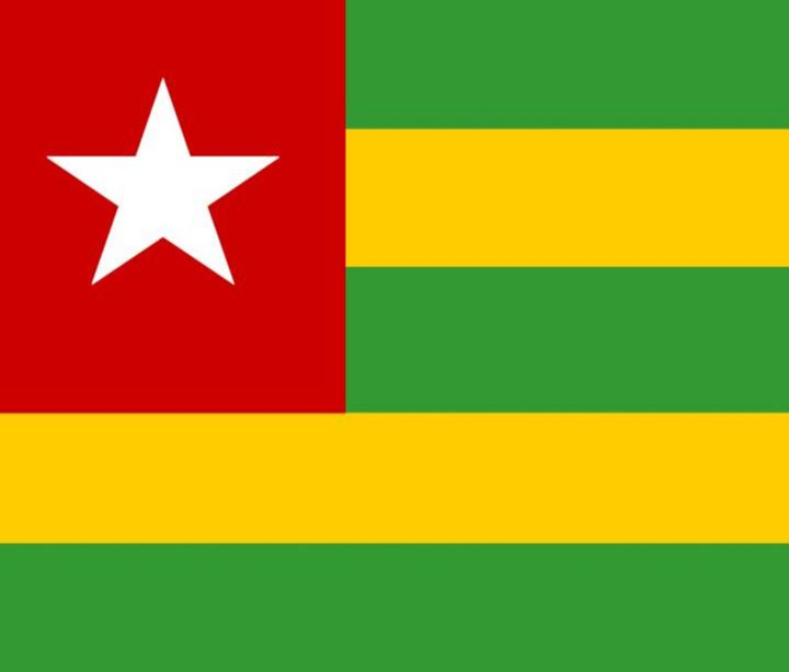Togo Flag - My Evil Twin