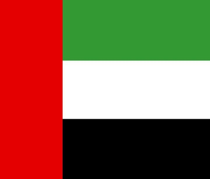 United Arab Emirates Flag - My Evil Twin