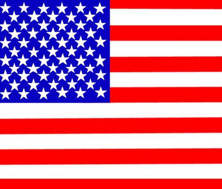 United States (50 Stars) Flag - My Evil Twin