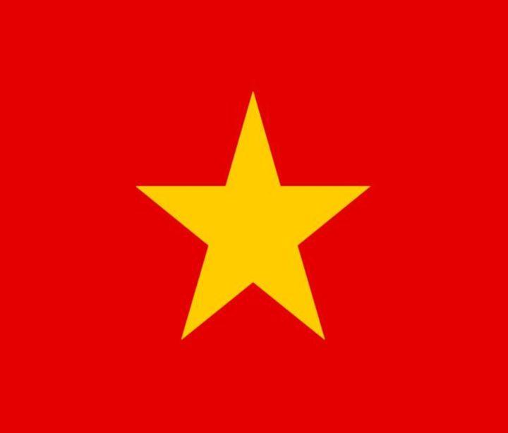 Vietnam Flag - My Evil Twin