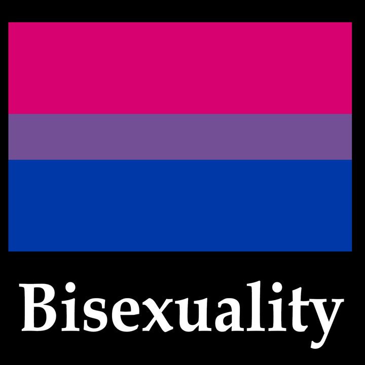 Bisexuality Flag And Name - My Evil Twin