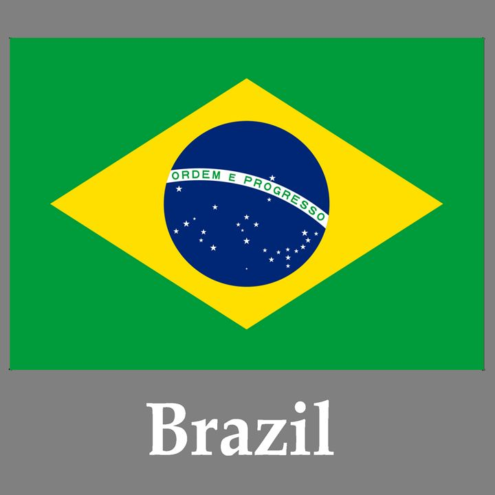 Brazil Flag And Name - My Evil Twin
