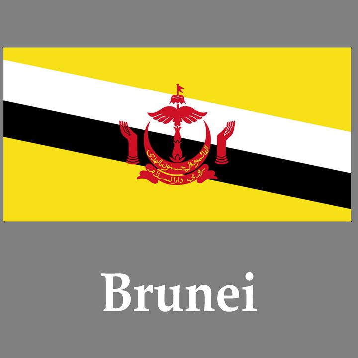 Brunei Flag And Name - My Evil Twin
