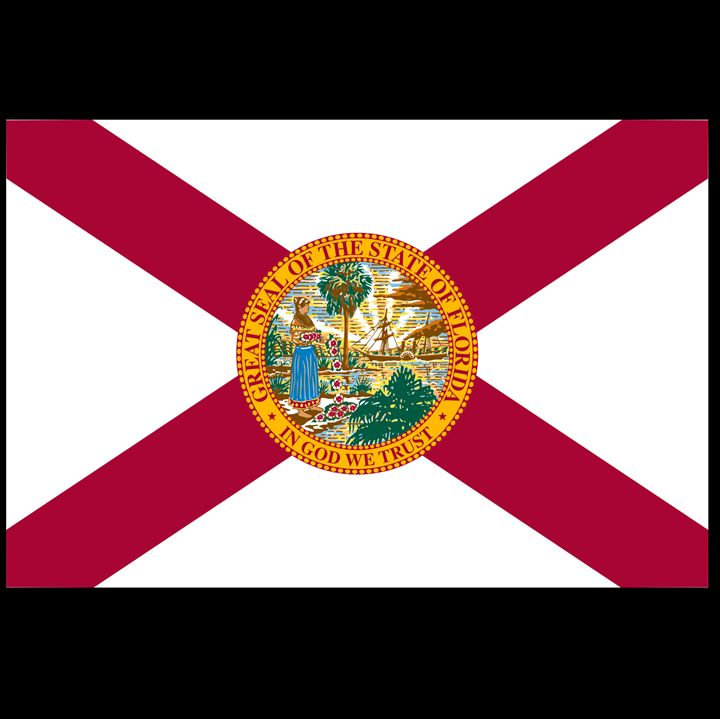 Florida Flag - My Evil Twin