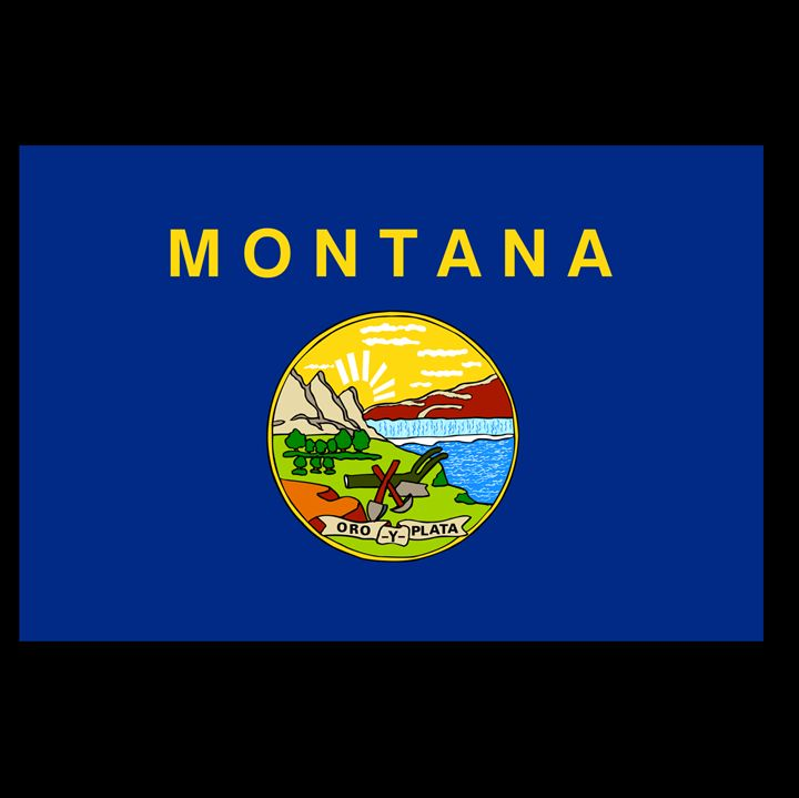 Montana Flag - My Evil Twin