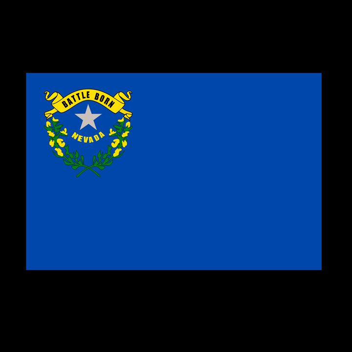 Nevada Flag - My Evil Twin