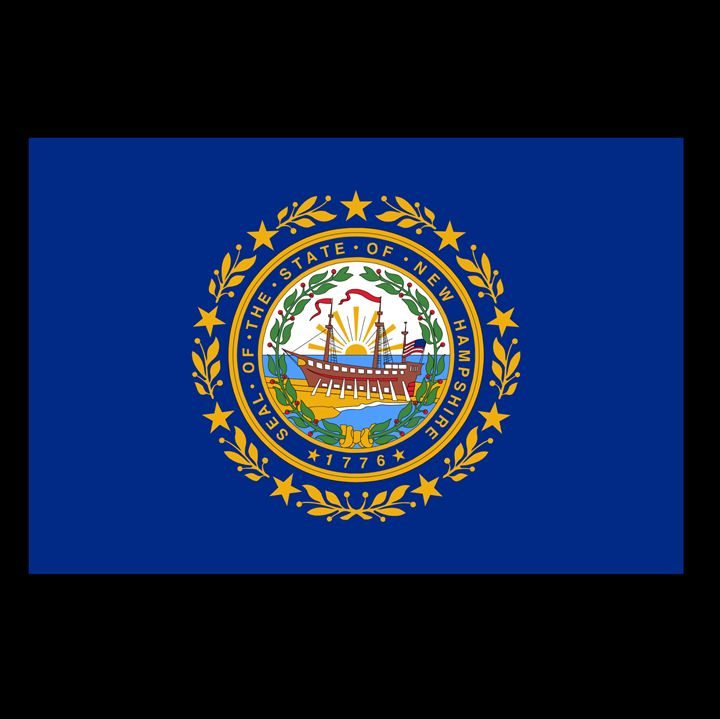 New Hampshire Flag - My Evil Twin
