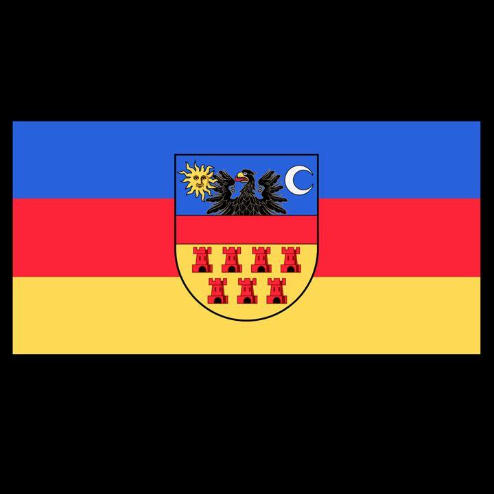 Transylvania Historical Flag - My Evil Twin