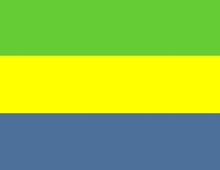 Gabon Flag - My Evil Twin