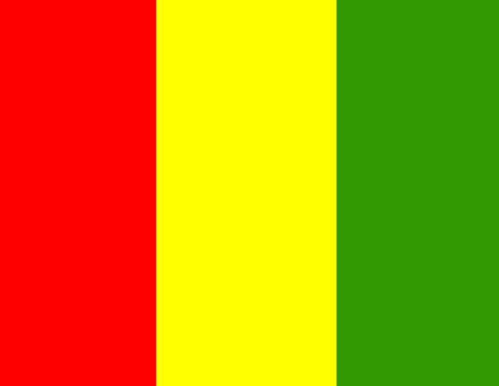 Guinea Flag - My Evil Twin