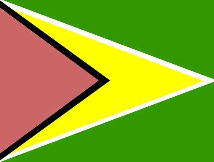 Guyana Flag - My Evil Twin