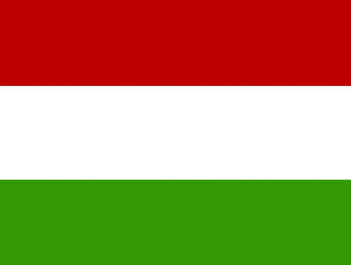 Hungary Flag - My Evil Twin