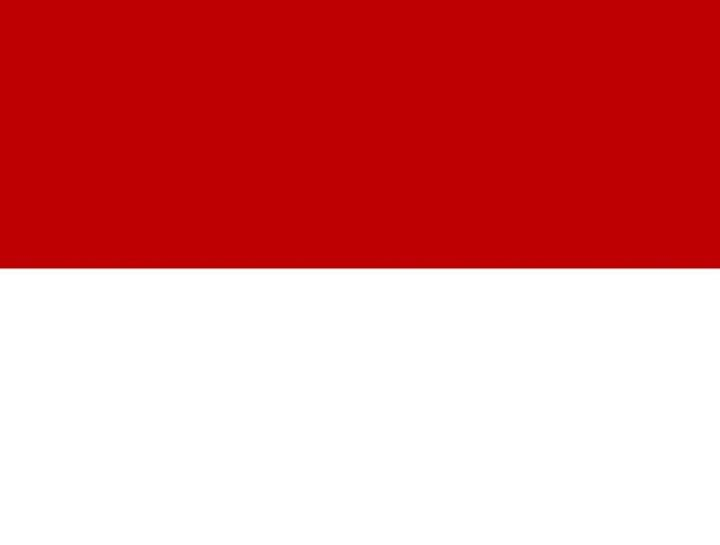 Indonesia Flag - My Evil Twin