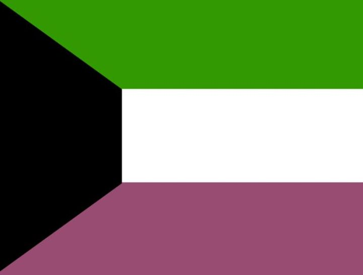 Kuwait Flag - My Evil Twin