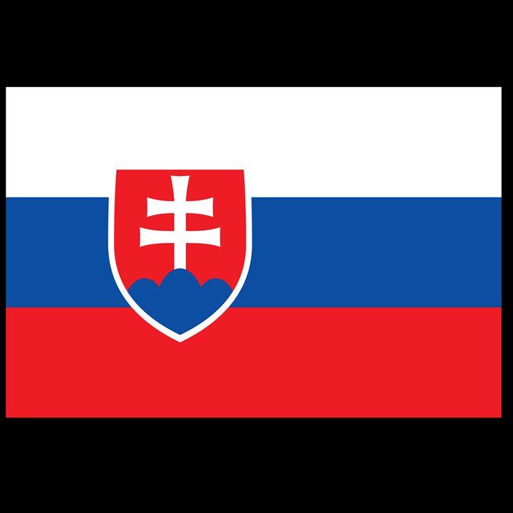 Slovakia Flag - My Evil Twin