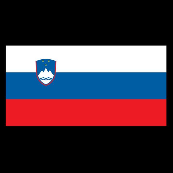 Slovenia Flag - My Evil Twin