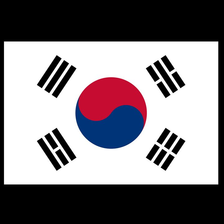 South Korea Flag - My Evil Twin