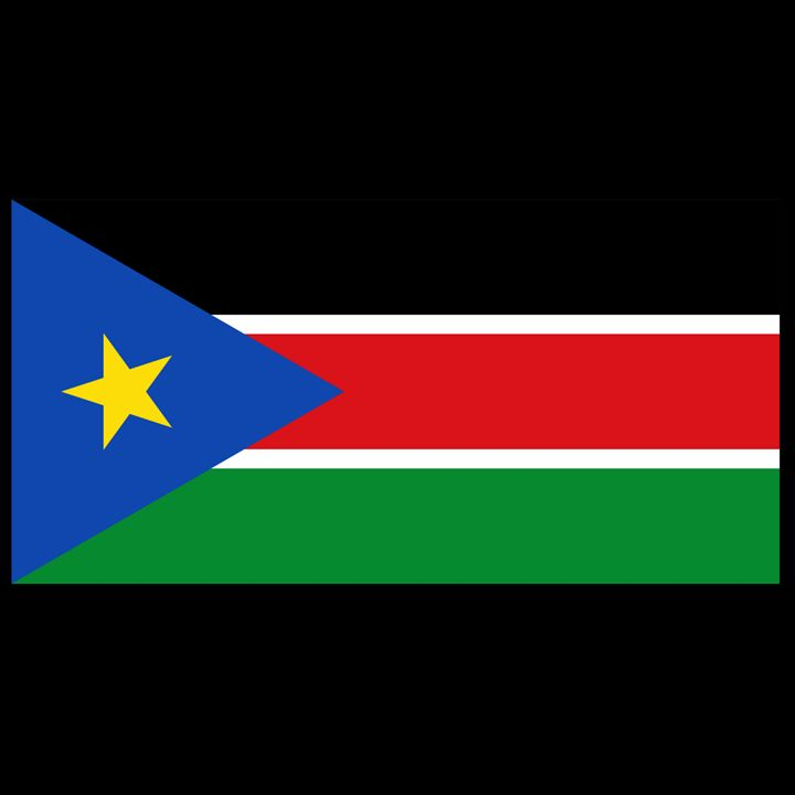 South Sudan Flag - My Evil Twin