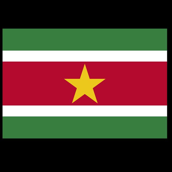 Suriname Flag - My Evil Twin
