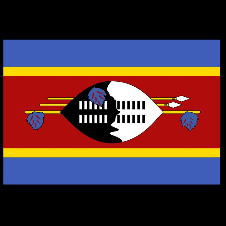 Swaziland Flag - My Evil Twin
