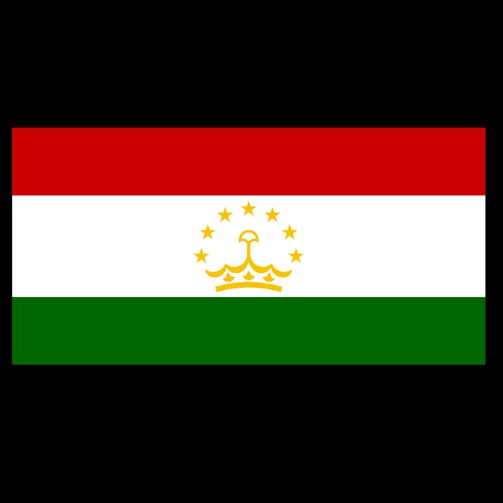 Tajikistan Flag - My Evil Twin
