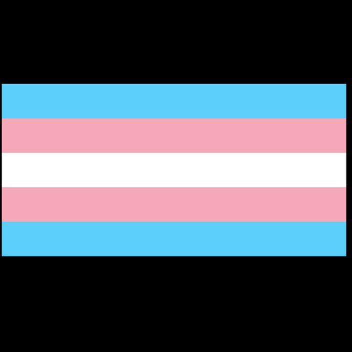 Transgender Flag - My Evil Twin