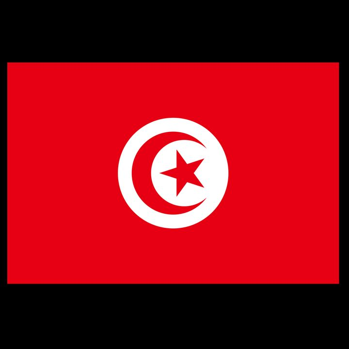 Tunisia Flag - My Evil Twin