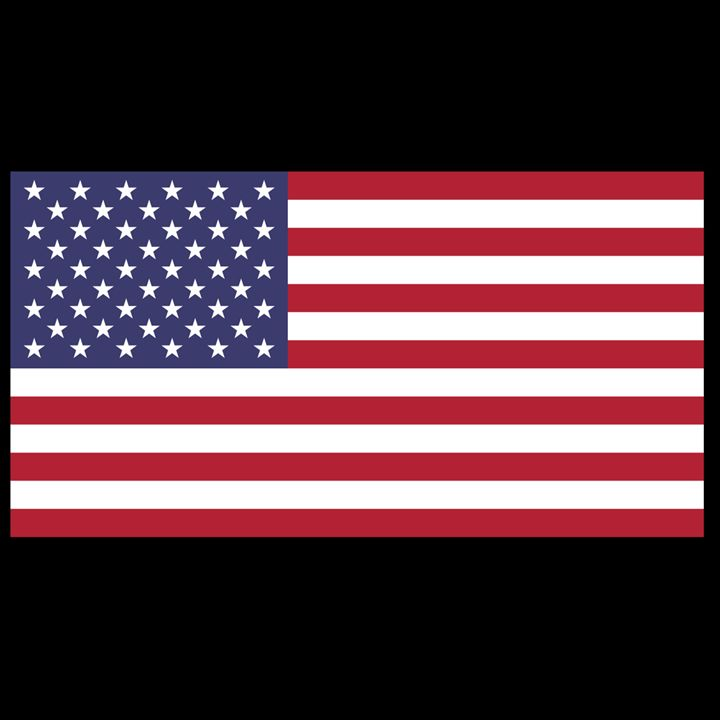 United States Flag - My Evil Twin