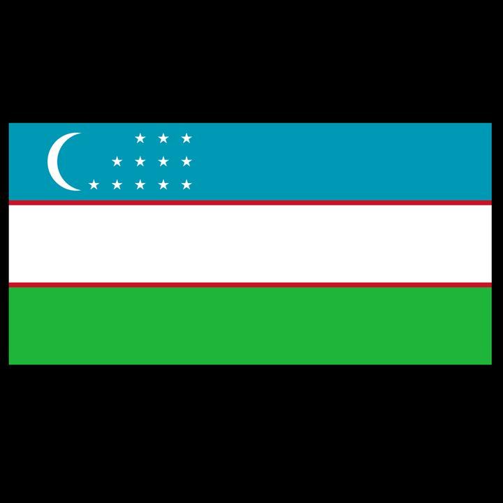 Uzbekistan Flag - My Evil Twin