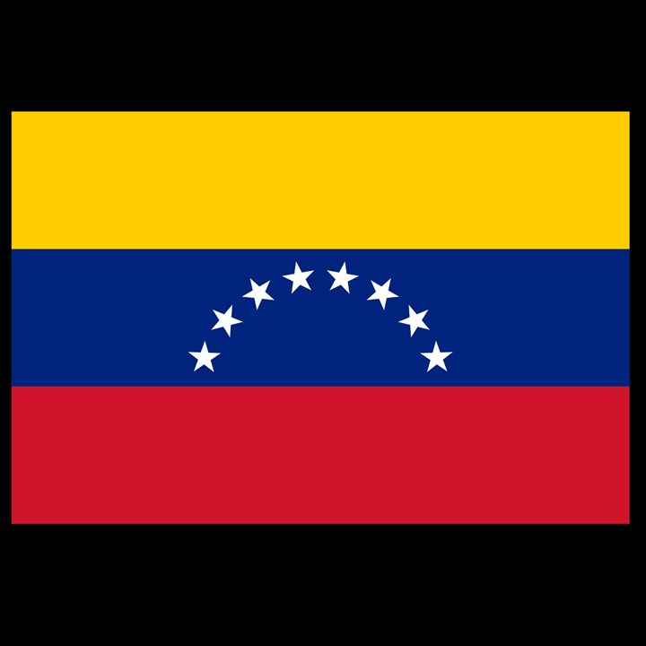 Venezuela Flag - My Evil Twin