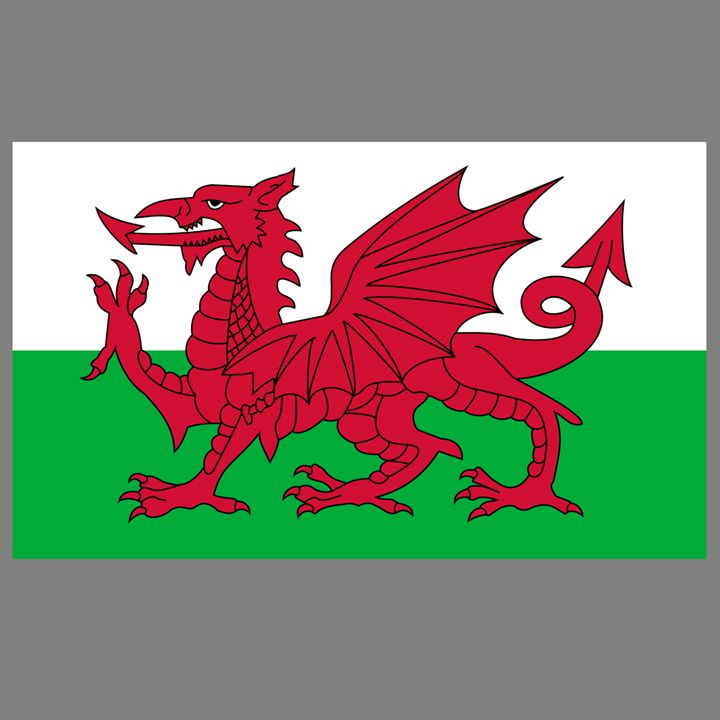 Wales Flag - My Evil Twin