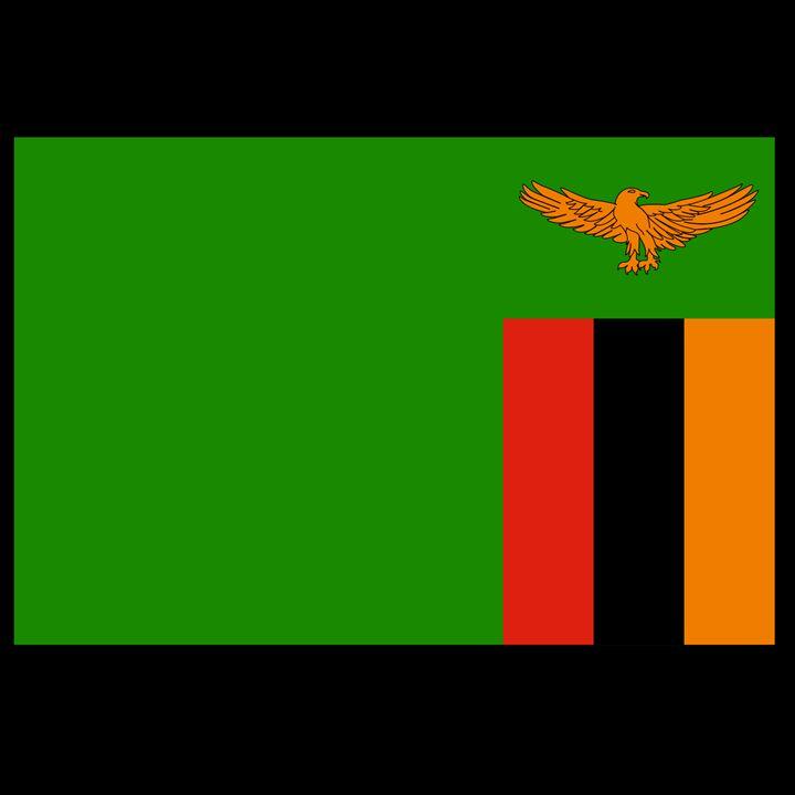 Zambia Flag - My Evil Twin