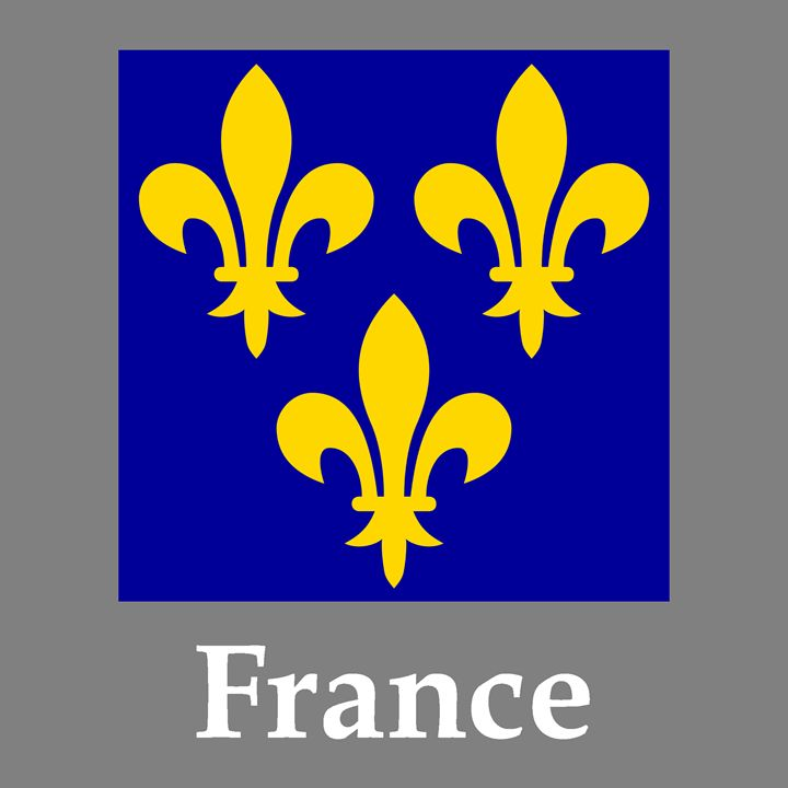 France Flag 14-16 Century And Name - My Evil Twin
